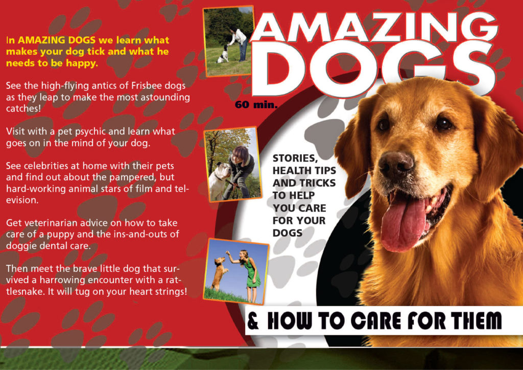 Amazing Dogs & How to Care for Them